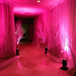 modern-pink-lighting
