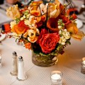 Scott Lewis Images, Beautiful Blooms