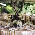 Beautiful Blooms Greenville Country Club Peter Van Beever Vintage Colors Manzanitta Centerpiece Vintage Hydrangea