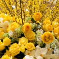 Beautiful Blooms PHS Wedding Wednesday Philadelphia Wedding Magazine Yellow, White and Green Flowers