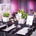 Beautiful Blooms Andy Kahl Tendenza Wedding Organic Plant Centerpieces Purple and Green Wedding
