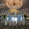 Beautiful Blooms The Down Town Club Phil Kramer Place Card Table Cescaphe Event Group Phalenopsis Orchids