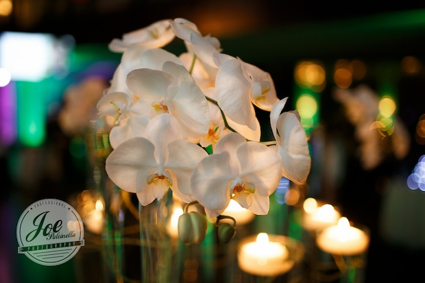 Beautiful Blooms Joe Pulcinella Phalenopis Orchids Leaping Trumpet Vases Spun Wire The Phonexville Foundry Bar Mitzvah