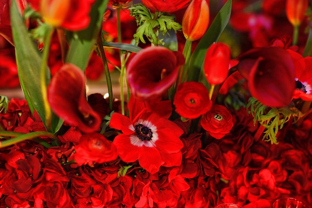 Beautiful Blooms Marie Labbancz Valentine's Day Red Flowers Tulips Anemones Ranunculus